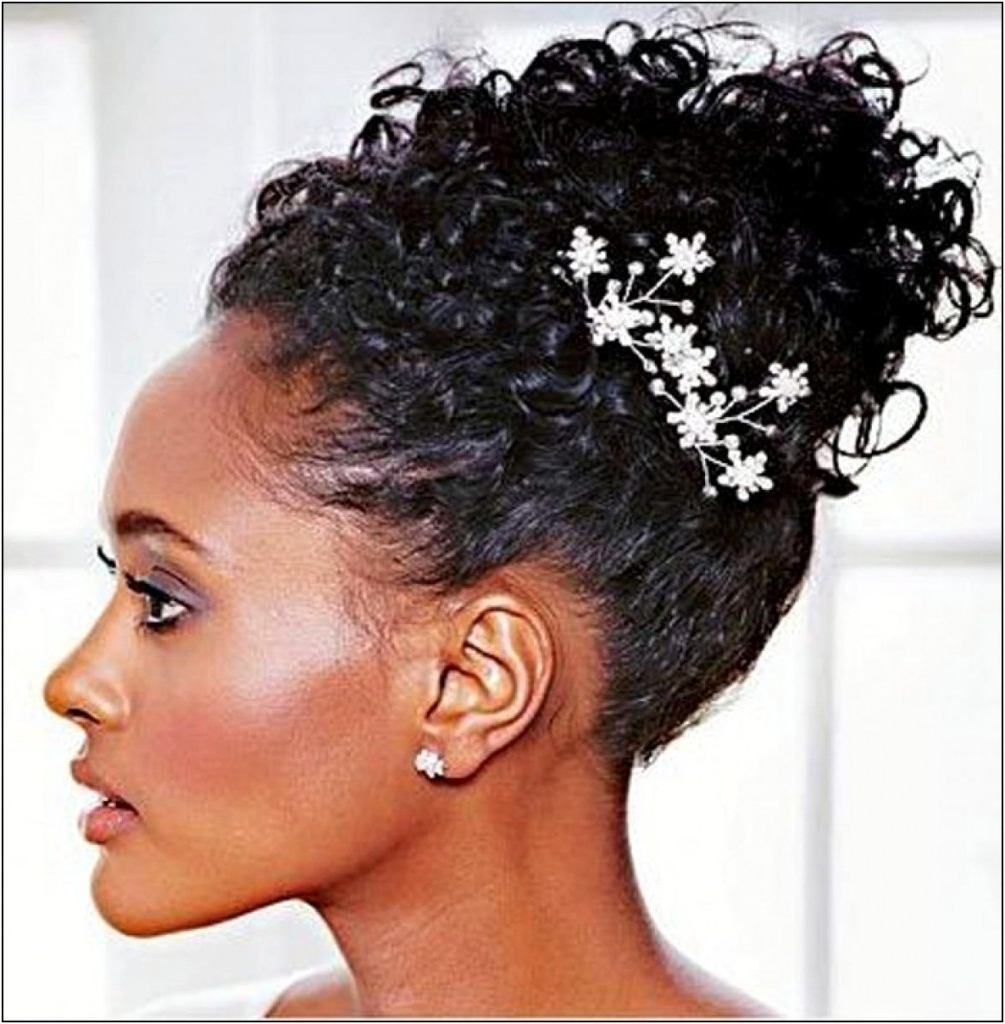 Single Braids Updo Hairstyles Tag Micro Braids Hairstyles Updos Regarding Single Braid Updo Hairstyles (View 12 of 15)