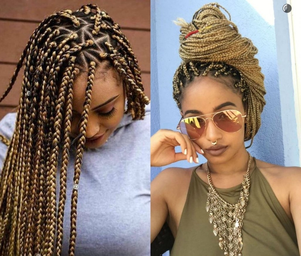 Spectacular Long Box Braids Hairstyles 2017 | Hairdrome Regarding In Braided Updos With Extensions (View 15 of 15)