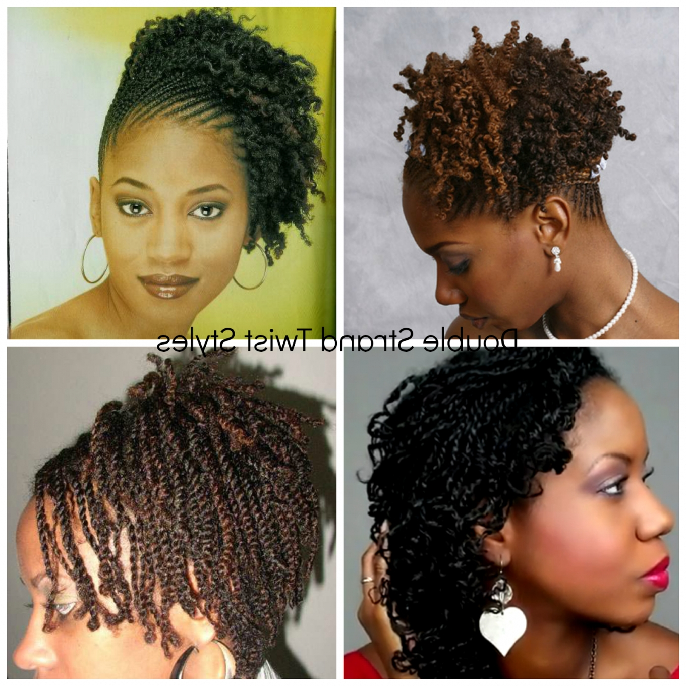 Unique Double & Two Strand Twisted Natural Hair Styles | Rockin Throughout 2 Strand Twist Updo Hairstyles (Gallery 4 of 15)