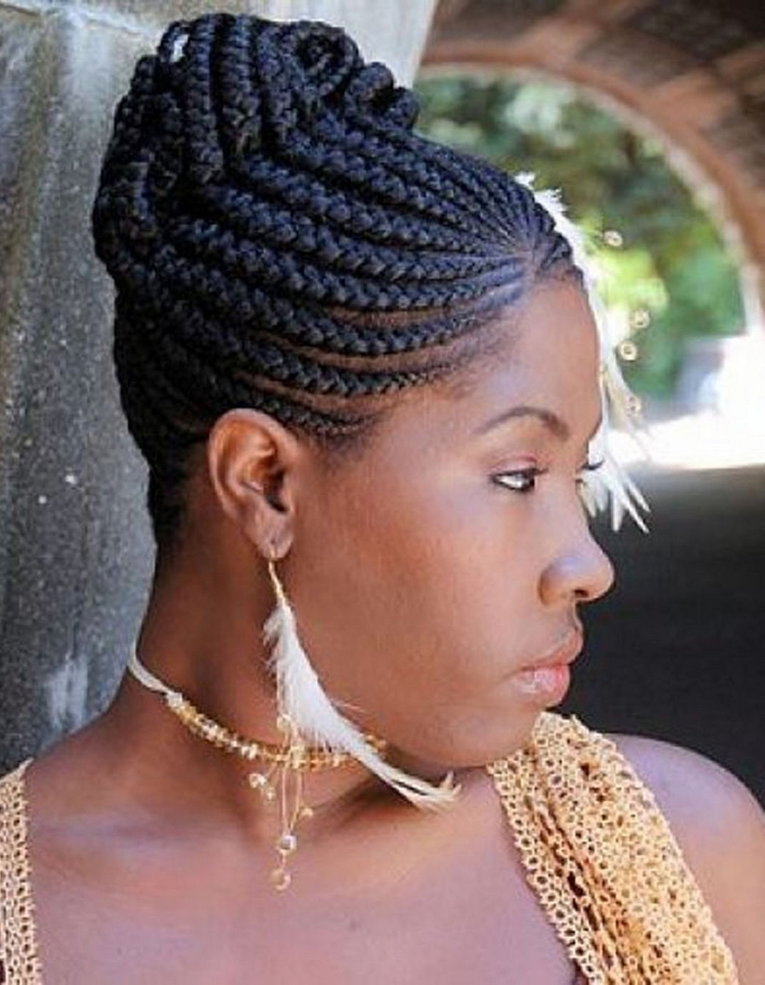 Updo Hairstyles Braided Updo Hairstyles African American Best Hairstyles With Regard To Urban Updo Hairstyles (Gallery 6 of 15)