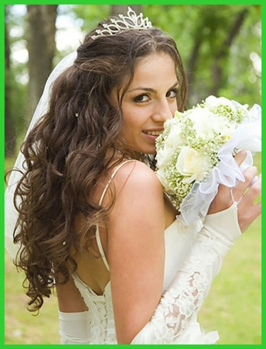 2018 Wedding Hairstyles For Long Hair Down With Veil With Regard To Unbelievable Bridesmaid Hairstyle Long Hair Down Wedding Of Updos (View 1 of 15)