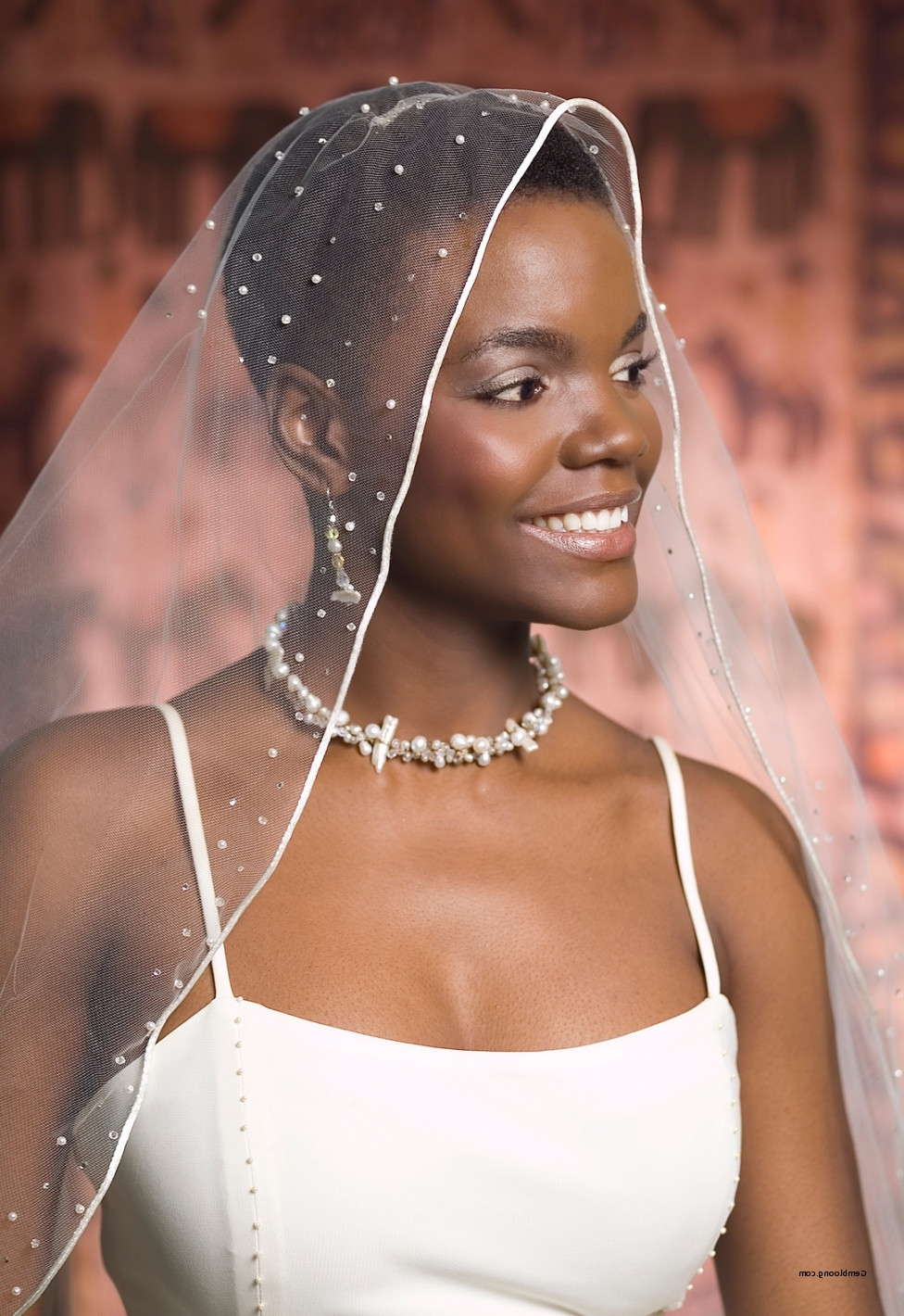 African American Wedding Hairstyles 2015 Beautiful African In Trendy Wedding Hairstyles For Long Curly Hair With Veil (View 2 of 15)