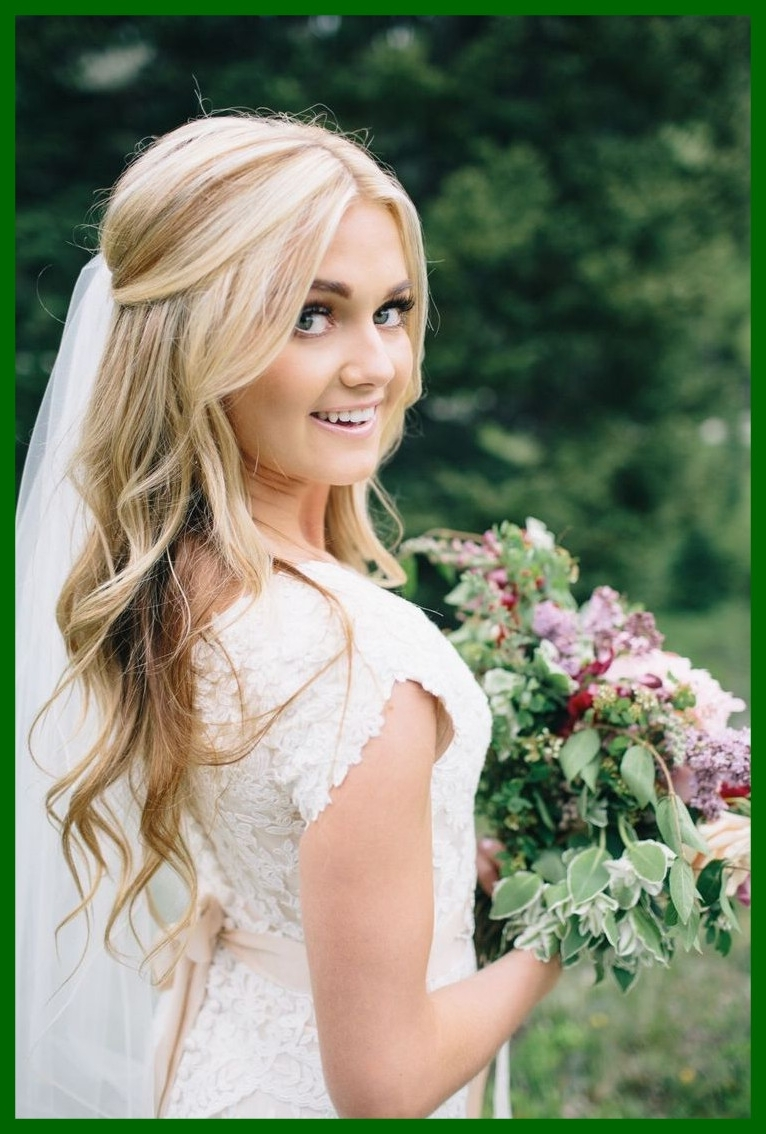Amazing Cute U Romantic Hairstyle Ideas For Wedding Veil And Long Inside Famous Wedding Hairstyles For Long Hair Without Veil (View 5 of 15)