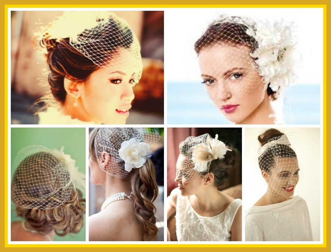Best And Newest Updos Wedding Hairstyles With Veil In Best Wedding Hairstyles With A Birdcage Veil Hair World Magazine For (View 2 of 15)