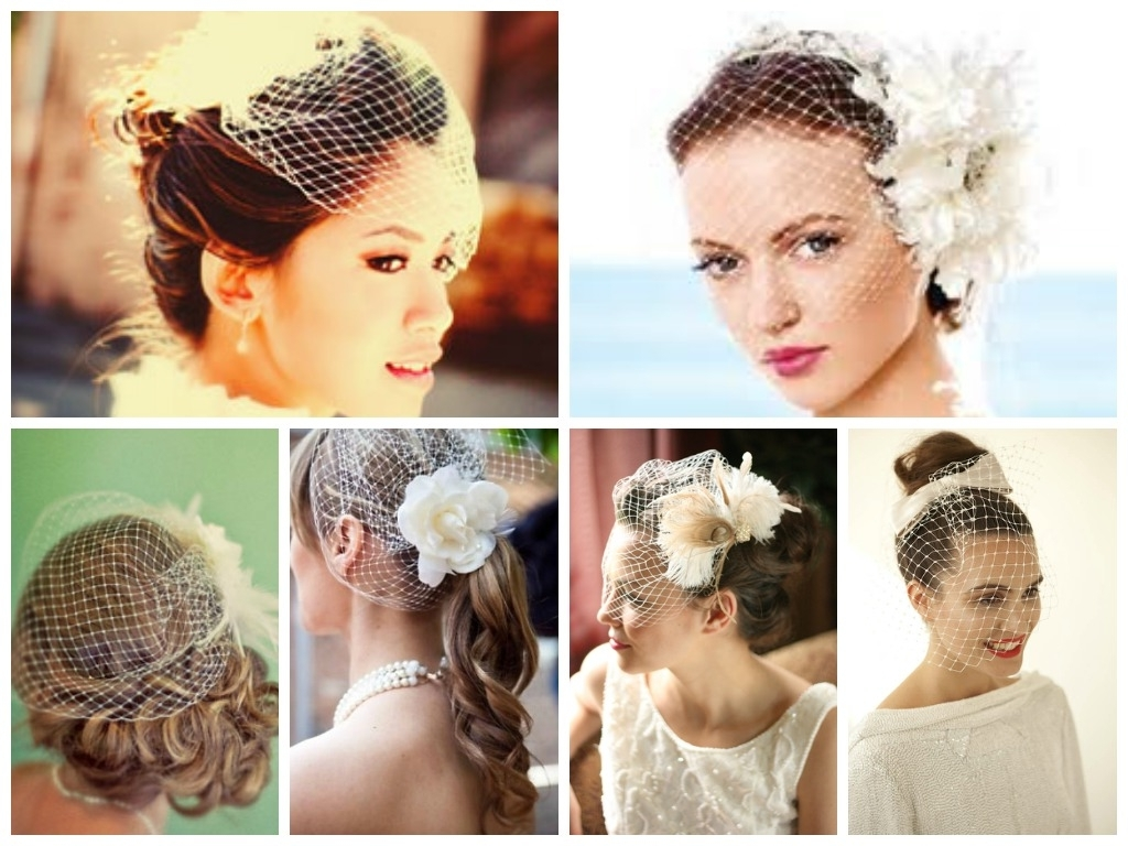 Bird Cage Veil Updo Hairstyles For Long Hair Regarding Most Current Wedding Hairstyles For Long Hair Up With Veil (View 4 of 15)