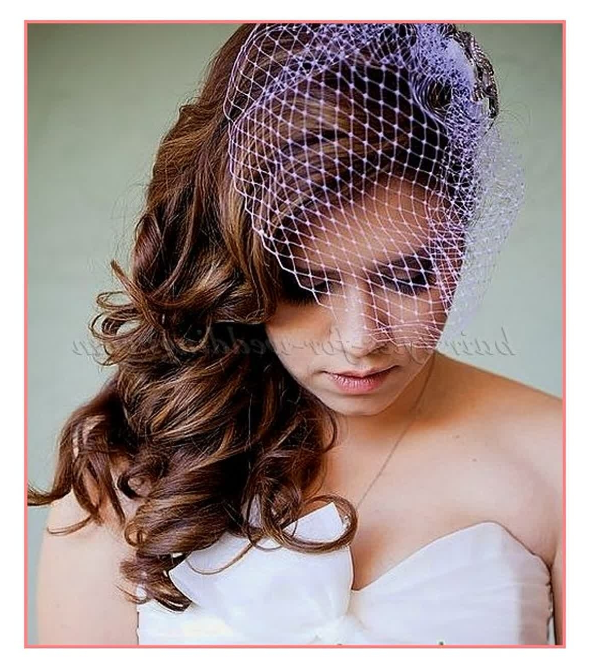 Brilliant Ideas Wedding Hairstyles For Long Hair Birdcage Veil In Well Known Wedding Hairstyles For Long Hair With Birdcage Veil (View 10 of 15)