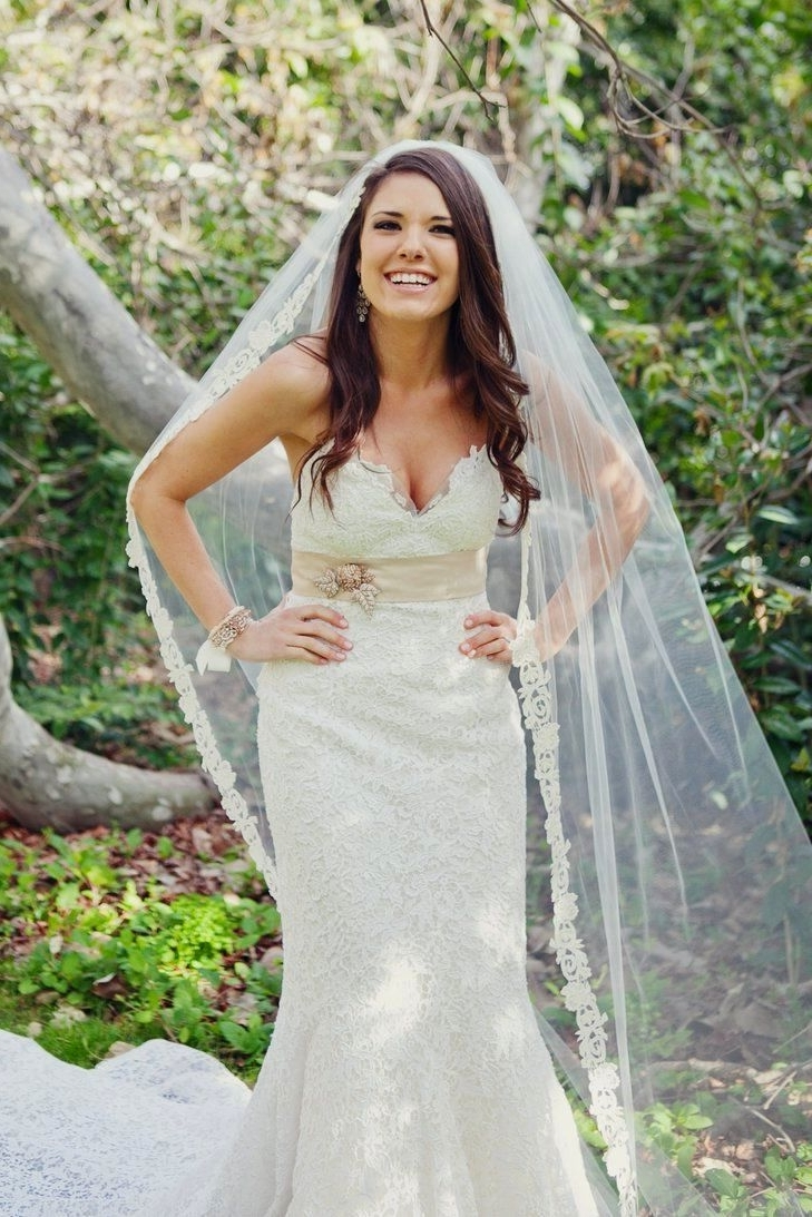 Famous Bride Hairstyles For Long Hair With Veil With Wedding Hair Down With Veil Pinterest I Might Have A 1 50th (View 10 of 15)