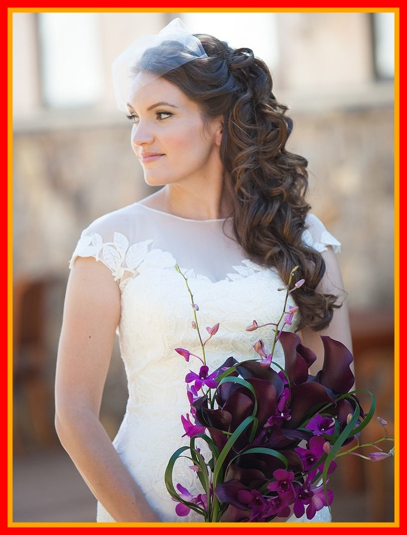 Incredible Wedding Hair With Birdcage Veil Contemporary Image Of Pertaining To 2017 Wedding Hairstyles With Veils (View 9 of 15)