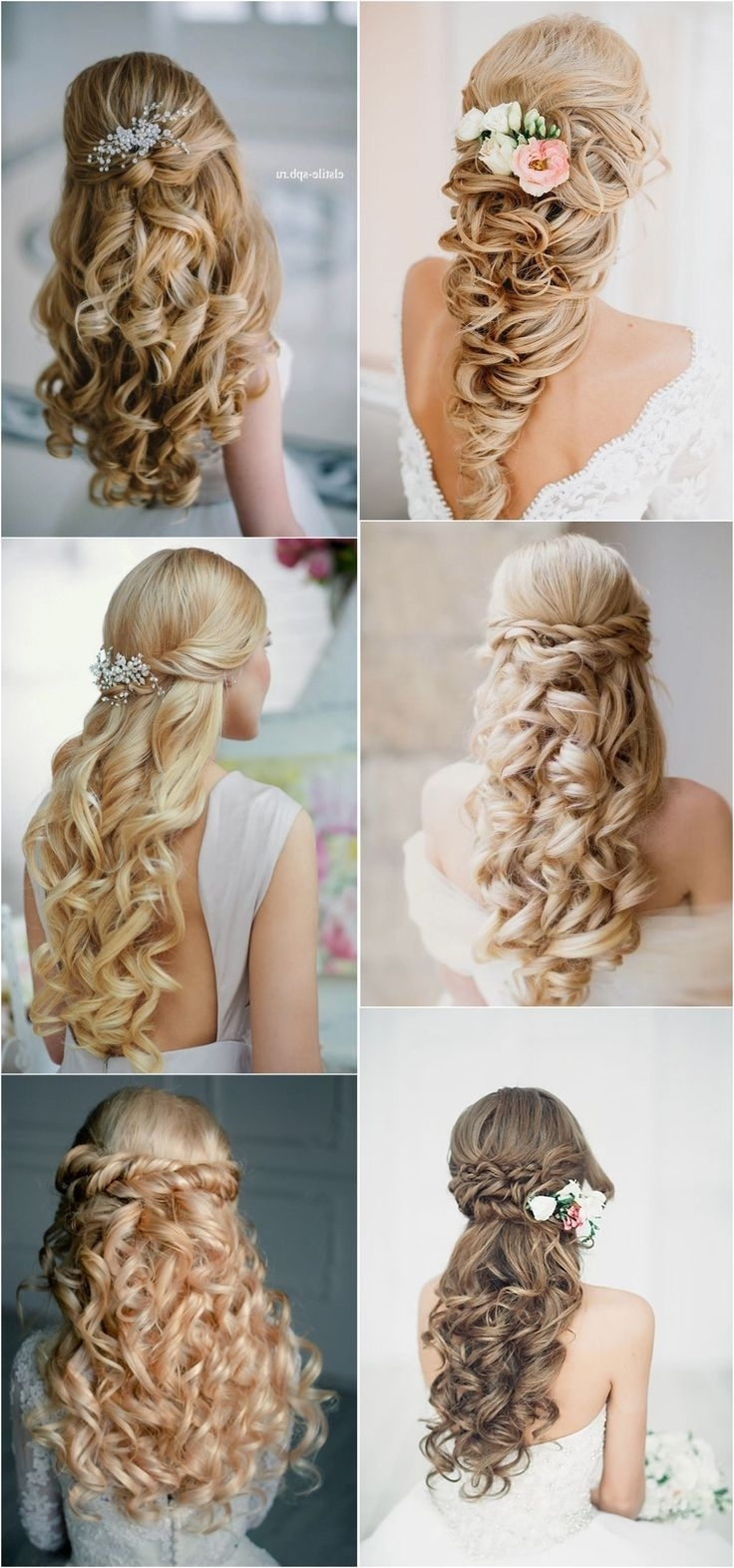 Latest Elstile Wedding Hairstyles For Long Hair Within Bridal Hairstyles : 40 Stunning Half Up Half Down Wedding Hairstyles (View 3 of 15)