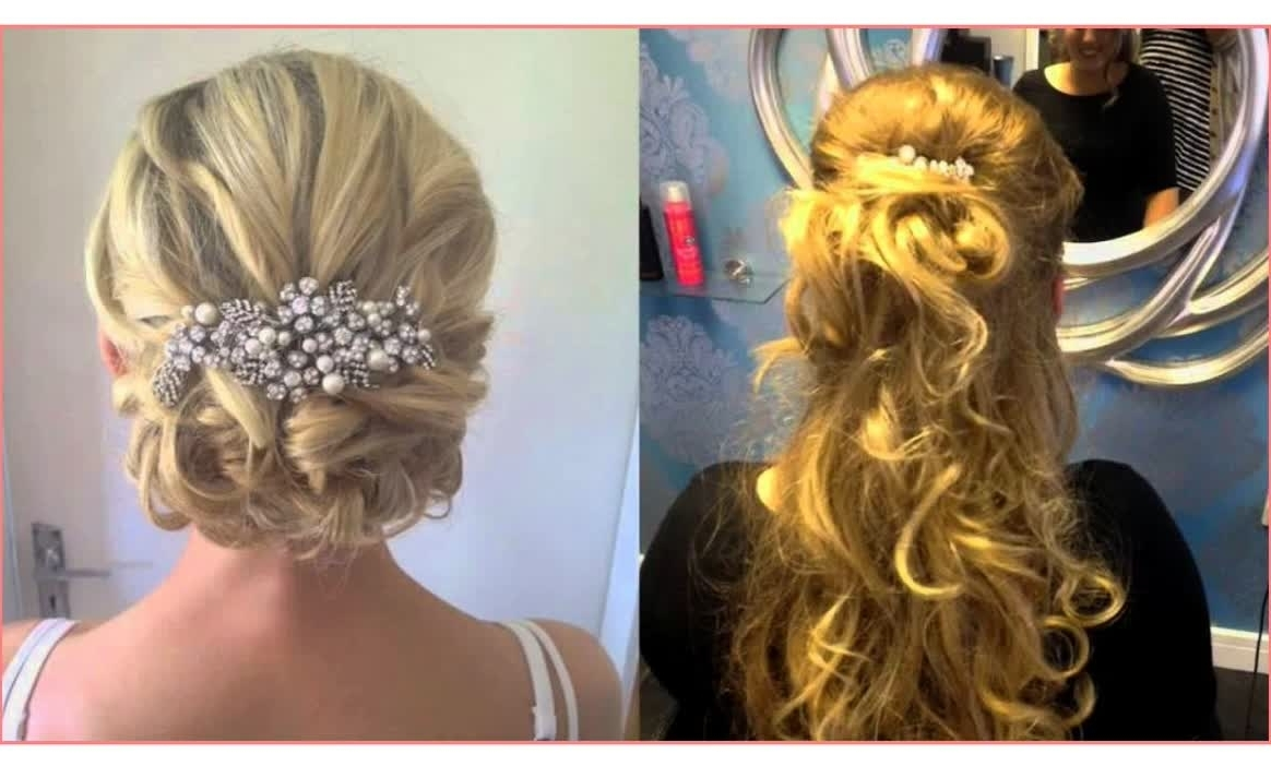 Most Popular Wedding Guest Hairstyles For Long Hair Down With Regard To Beautiful Hairstyles Half Up Half Down Wedding Guest Hair – Best (View 11 of 15)