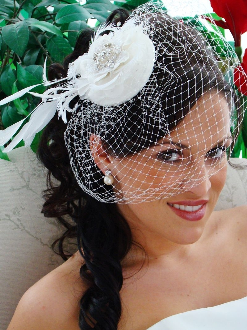 Most Popular Wedding Hairstyles For Long Hair With Birdcage Veil For Vintage Wedding Hairstyles With Veil (View 12 of 15)