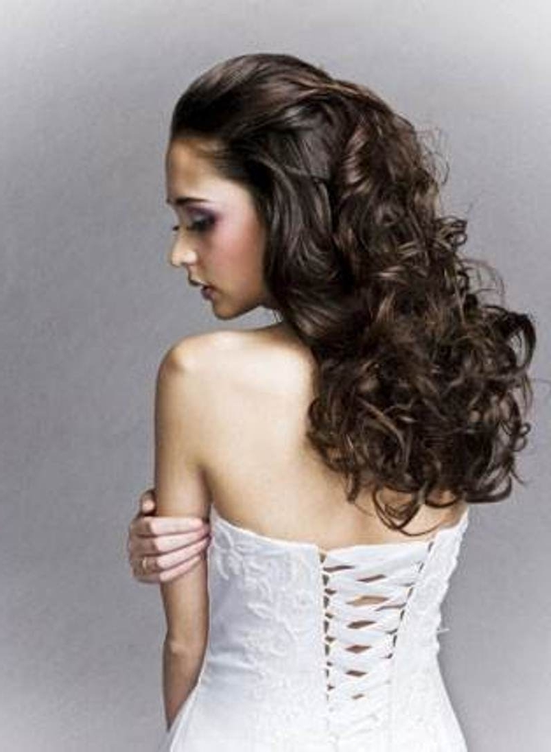 Most Recent Wedding Hairstyles For Long Hair With Curls Intended For Wedding Hairstyles Ideas: Long Curly Half Up Wedding Hairstyles For (View 12 of 15)