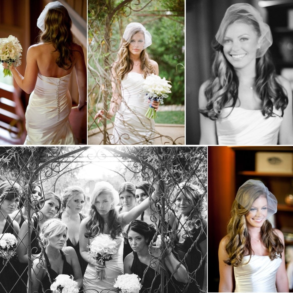 Most Recently Released Wedding Hairstyles For Long Hair With Birdcage Veil In Romantic Wedding Hairstyles All Down Bridal Hairstyle Birdcage Veil (View 14 of 15)