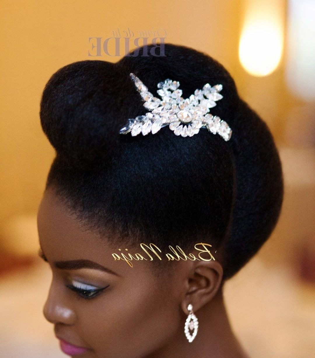 Natural Hair For Wedding Day Colour Hairstyles Weddings Updo Styles Within Most Recent Wedding Hairstyles For Short Afro Hair (View 6 of 15)