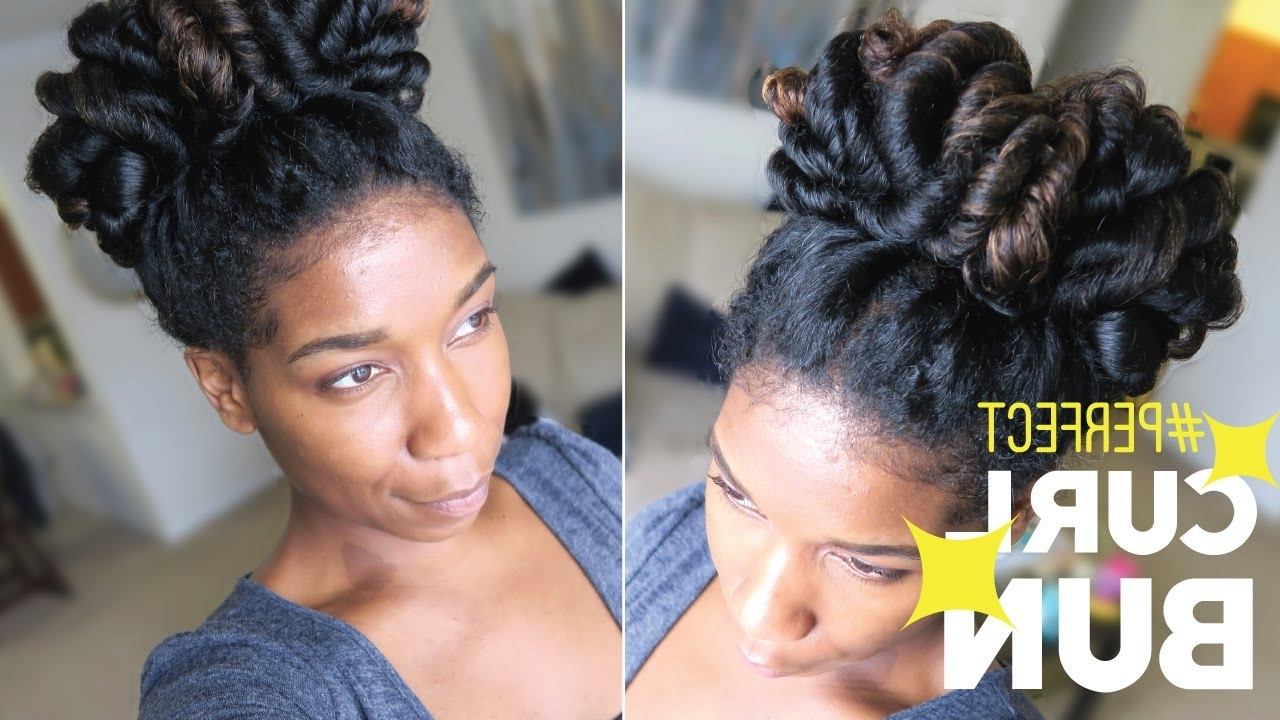 Perfect Curl Bun – Easy Heatless Natural Hairstyle  Naptural85 – Youtube In Most Recently Released Wedding Hairstyles For Long Natural Curly Hair (View 11 of 15)