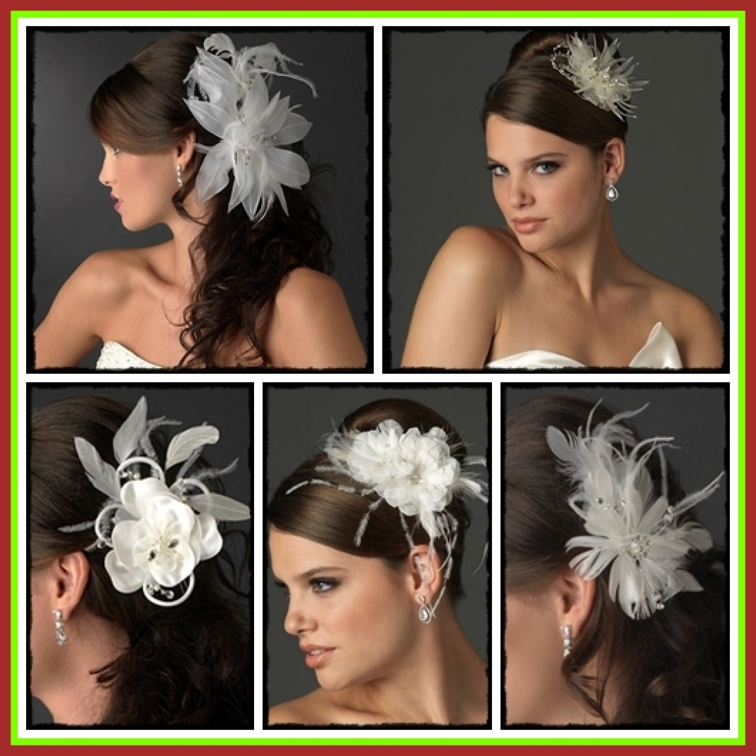 Shocking Wedding Hairstyles For Long Hair With Fascinator Picture Of With Most Current Wedding Hairstyles For Long Hair With Fascinator (View 12 of 15)