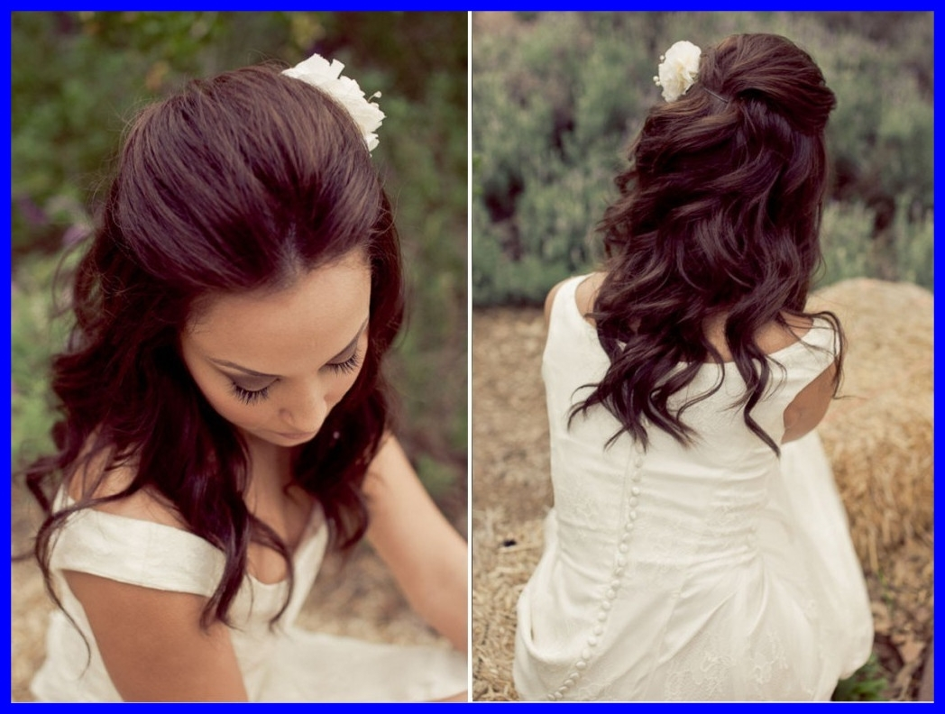Shocking Wedding Hairstyles Ideas Half Up Curly For Long Of Thick Inside Well Liked Wedding Hairstyles For Thick Hair (View 9 of 15)