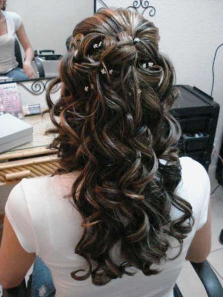 Wedding Hairstyles : Simple Wedding Hairstyles Long Hair Half Up Inside Newest Half Up Half Down Wedding Hairstyles For Long Hair (View 14 of 15)