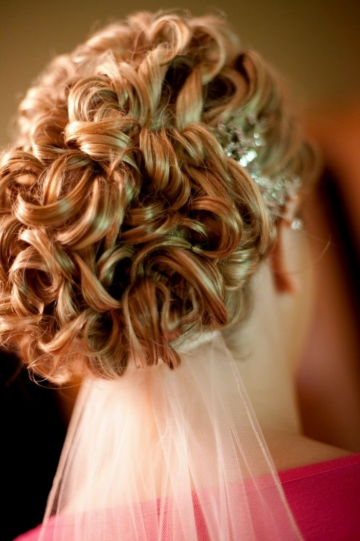 Wedding Hairstyles Veil Underneath (View 11 of 15)