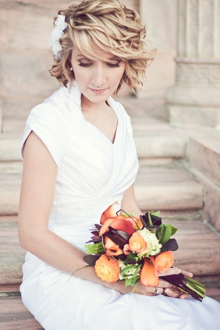 Well Known Christian Bridal Hairstyles For Short Hair With Regard To All You Need To Know About Wedding Hairstyles — Wedpics Blog (View 13 of 15)