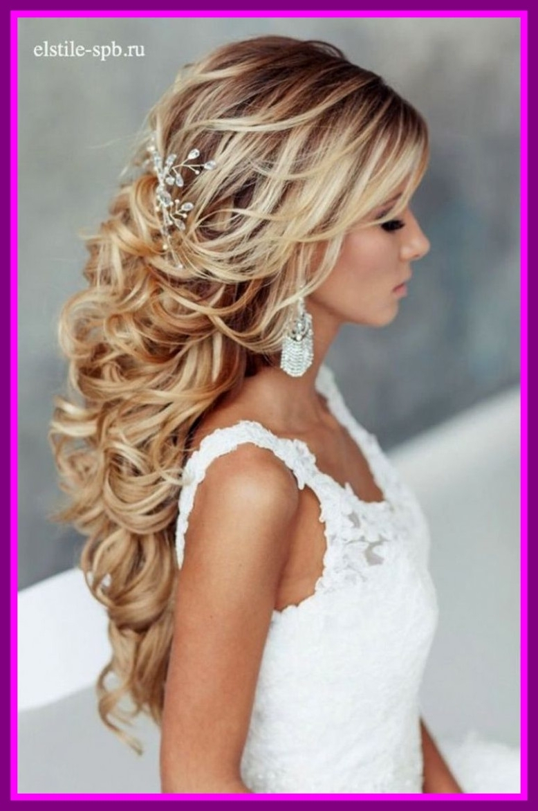 Well Known Wedding Hairstyles For Long Hair With Tiara Within Amazing Long Hair Wedding Hairstyles With Veil And Tiara A Pren (View 12 of 15)
