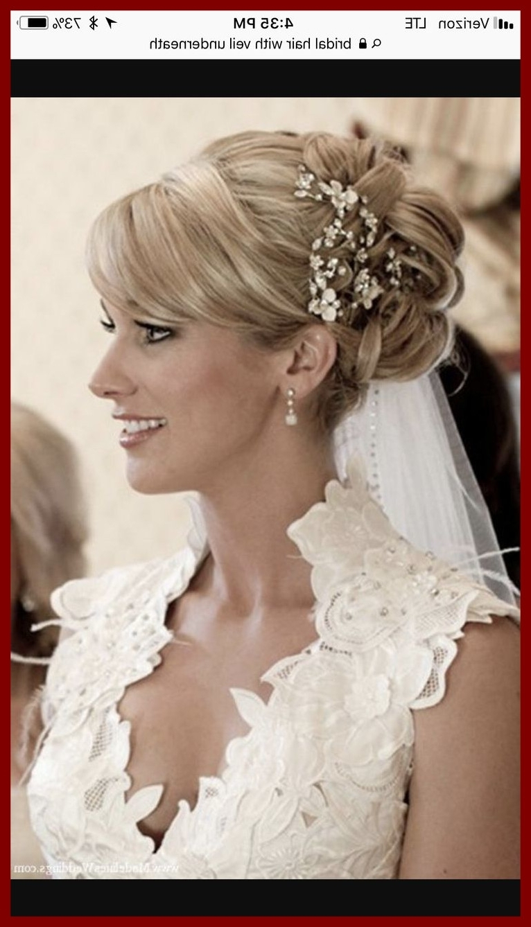 Well Liked Wedding Hairstyles With Veil Underneath Throughout Awesome Best Wedding Hair Picture For Hairstyles With Veil (View 11 of 15)