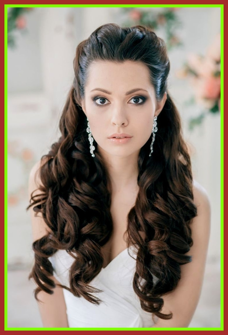 Widely Used Half Up With Veil Wedding Hairstyles Regarding Astonishing Wedding Hairstyles Half Up Down With Veil Ideas Picture (View 15 of 15)