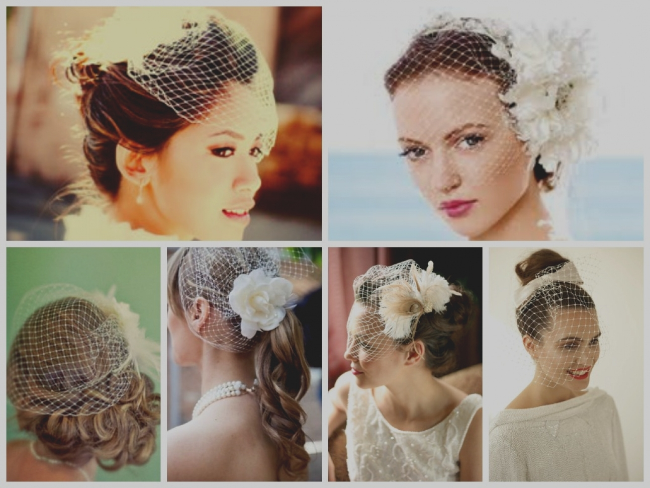 Widely Used Wedding Hairstyles For Short Hair With Birdcage Veil Intended For Latest Half Up Wedding Hairstyle With Birdcage Veil Vintage (View 5 of 15)