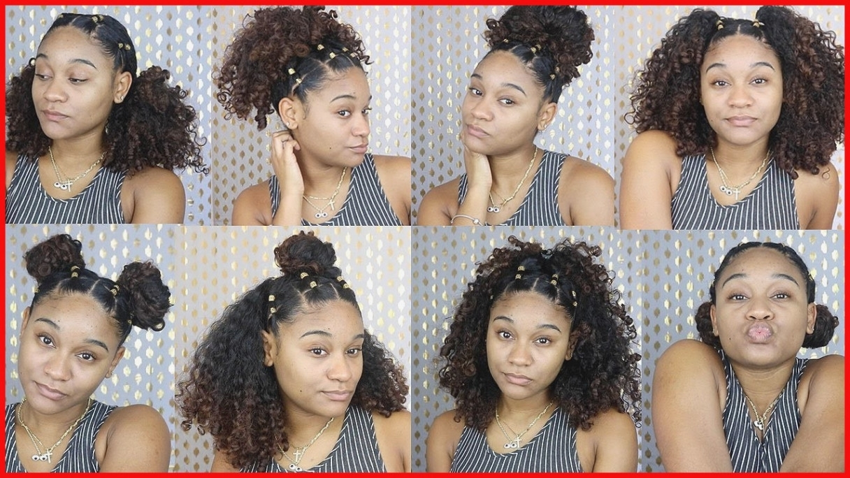 2017 Braided Hairstyles For Naturally Curly Hair For Twist Braids On Natural Curly Hair Hair Recovery – Braided (View 9 of 15)