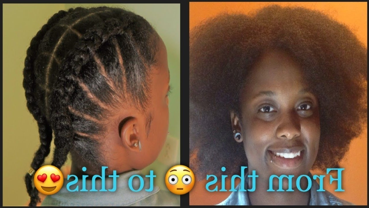 Best And Newest Braided Hairstyles Without Weave With Regard To Natural Hair Protective Style (Gallery 1 of 15)