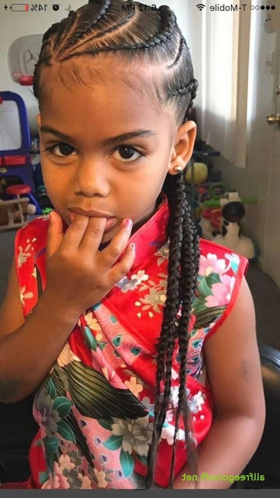 Best For 2017 Braided Hairstyles For Little Girls (View 5 of 15)