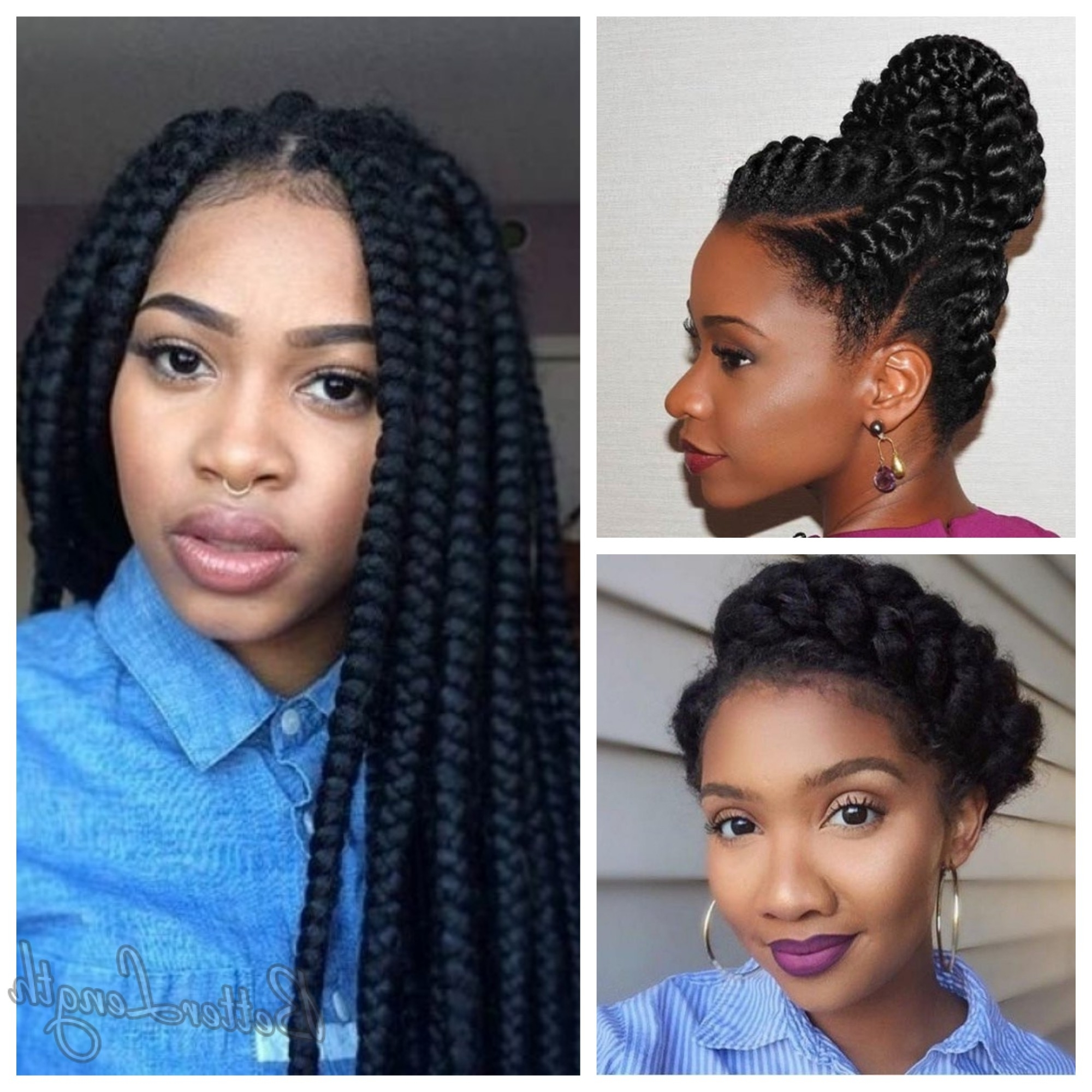 Betterlength Hair Within Most Up To Date Quick Braided Hairstyles For Black Hair (View 3 of 15)