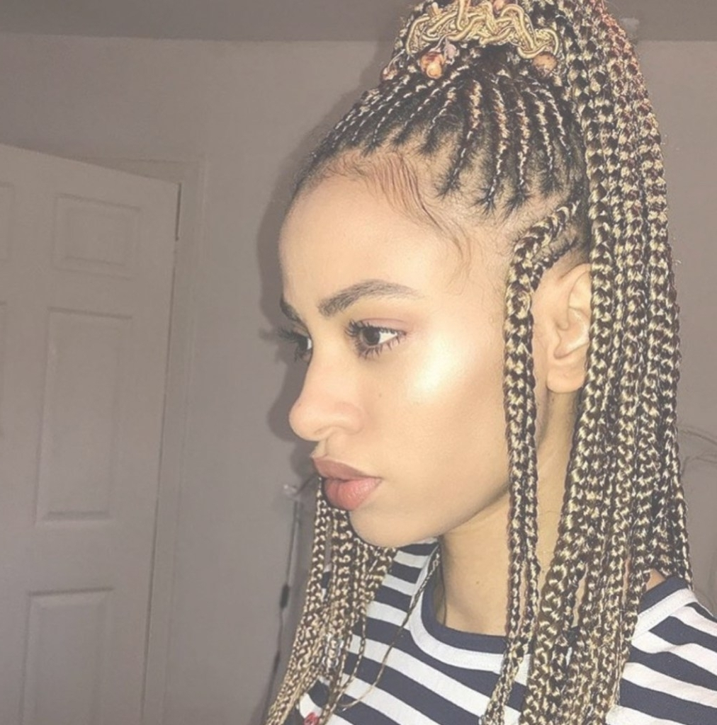 Black Braided Hairstyles Awesome Black Braid Hairstyles 2018 In Regarding Best And Newest Black Braided Hairstyles (View 11 of 15)