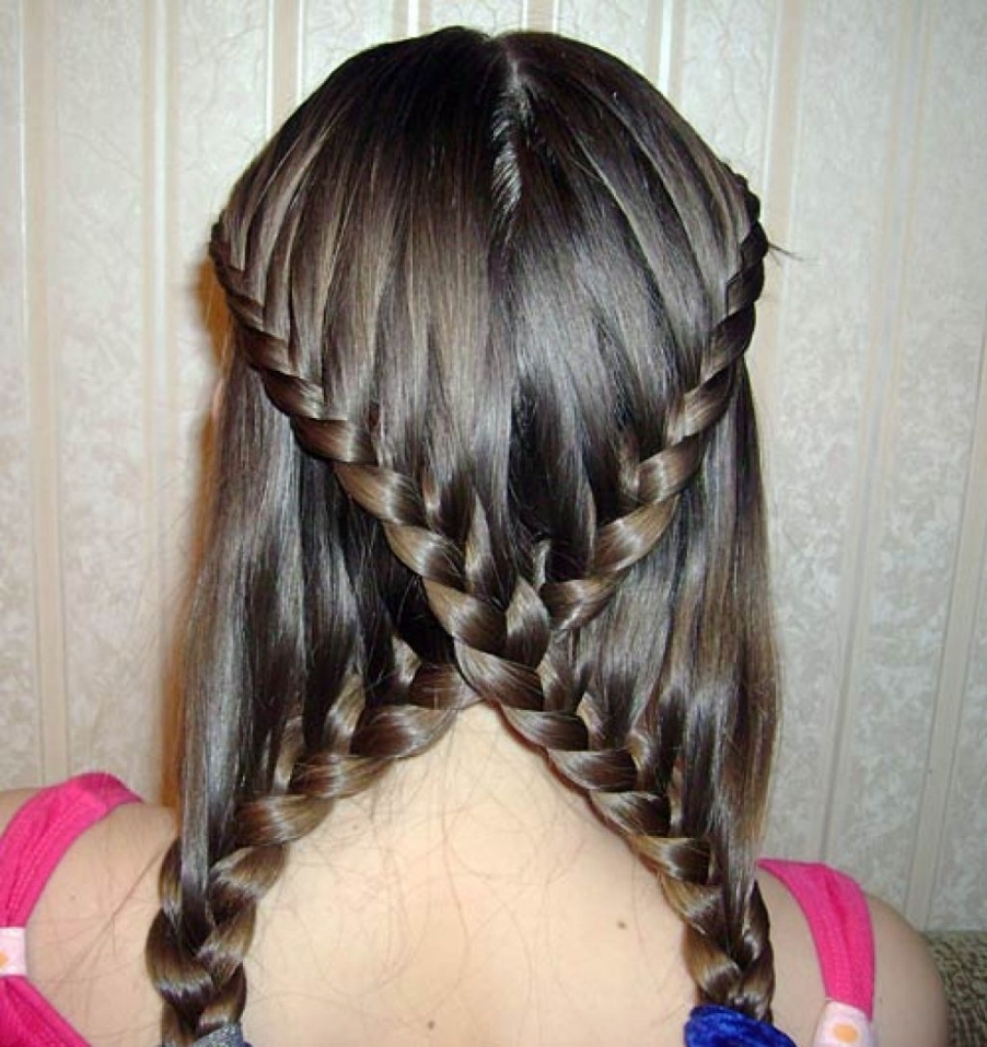 Braid Hairstyles With Straight Hair 37 Hair Braid Ideas, Hairstyles Intended For Best And Newest Braided Hairstyles For Straight Hair (View 8 of 15)