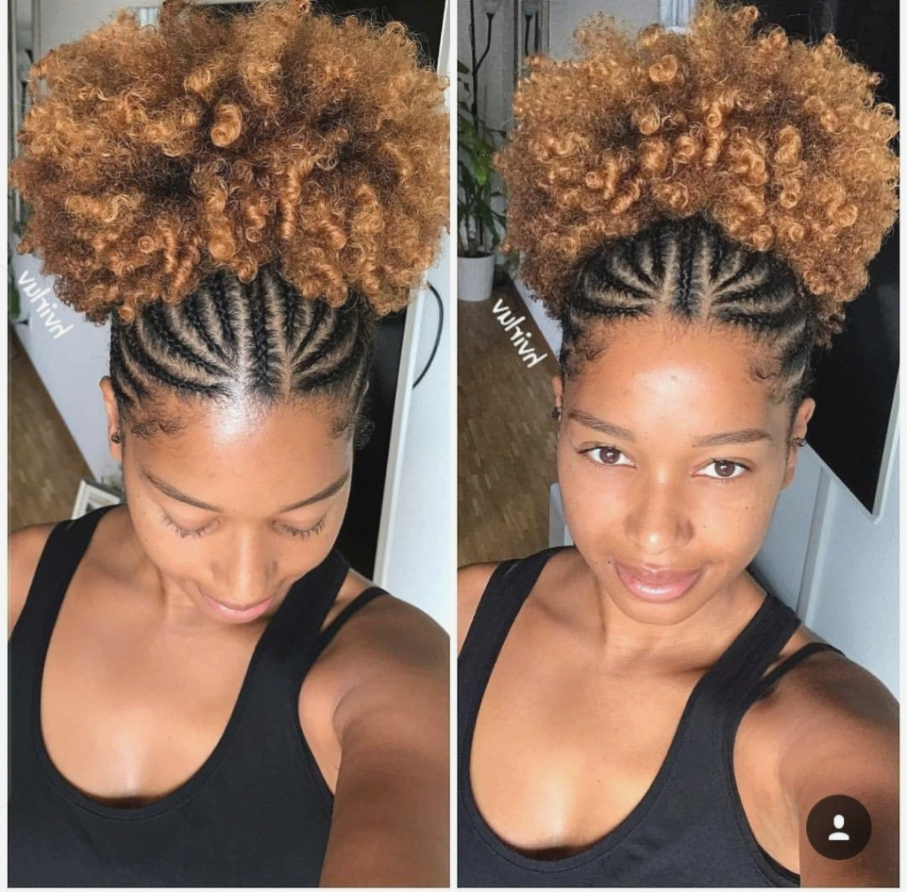 Famous Braided Hairstyles For Naturally Curly Hair With Regard To Hairstyles For Naturally Curly Hair New Braided Hairstyles Naturally (View 5 of 15)