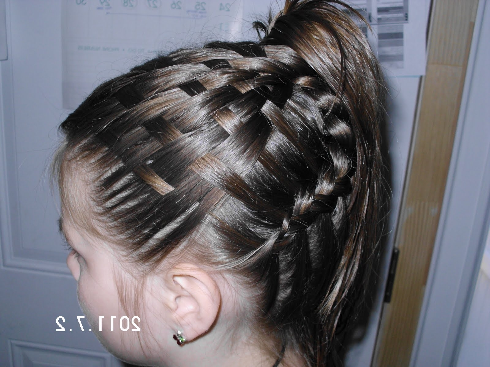 Famous Braided Hairstyles For Swimming In Adventures In Hairstyling: Basket Weave Hairstyle Variation (View 8 of 15)