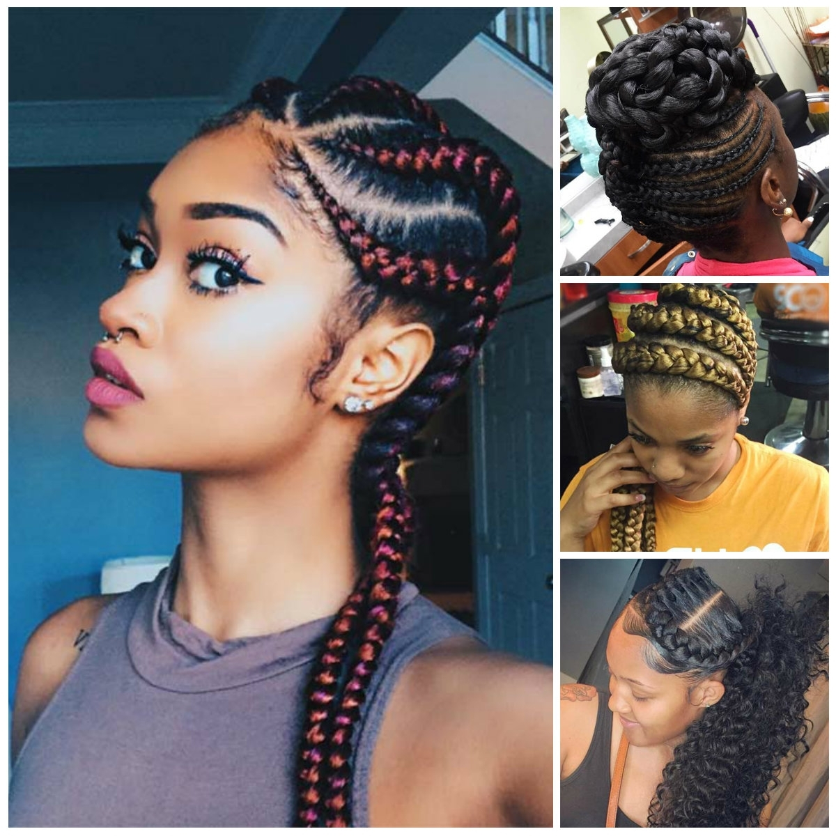 Famous Braided Hairstyles With Color Pertaining To Biolage Hair Color Towards Emejing Braids Hairstyles Gallery Styles (View 6 of 15)