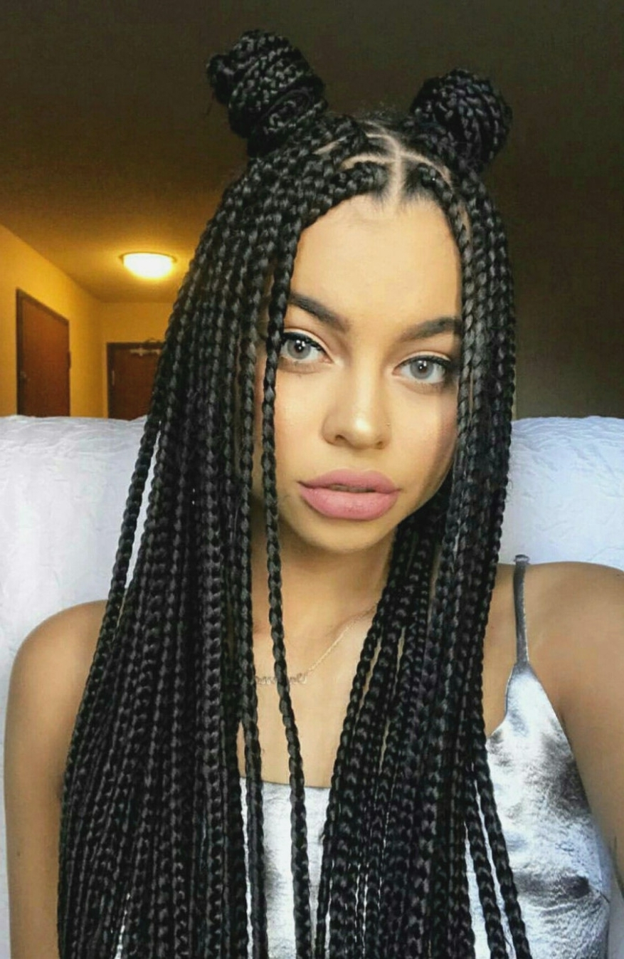 Five Facts About African American Braided Hairstyles That For Favorite African American Braided Hairstyles (View 2 of 15)