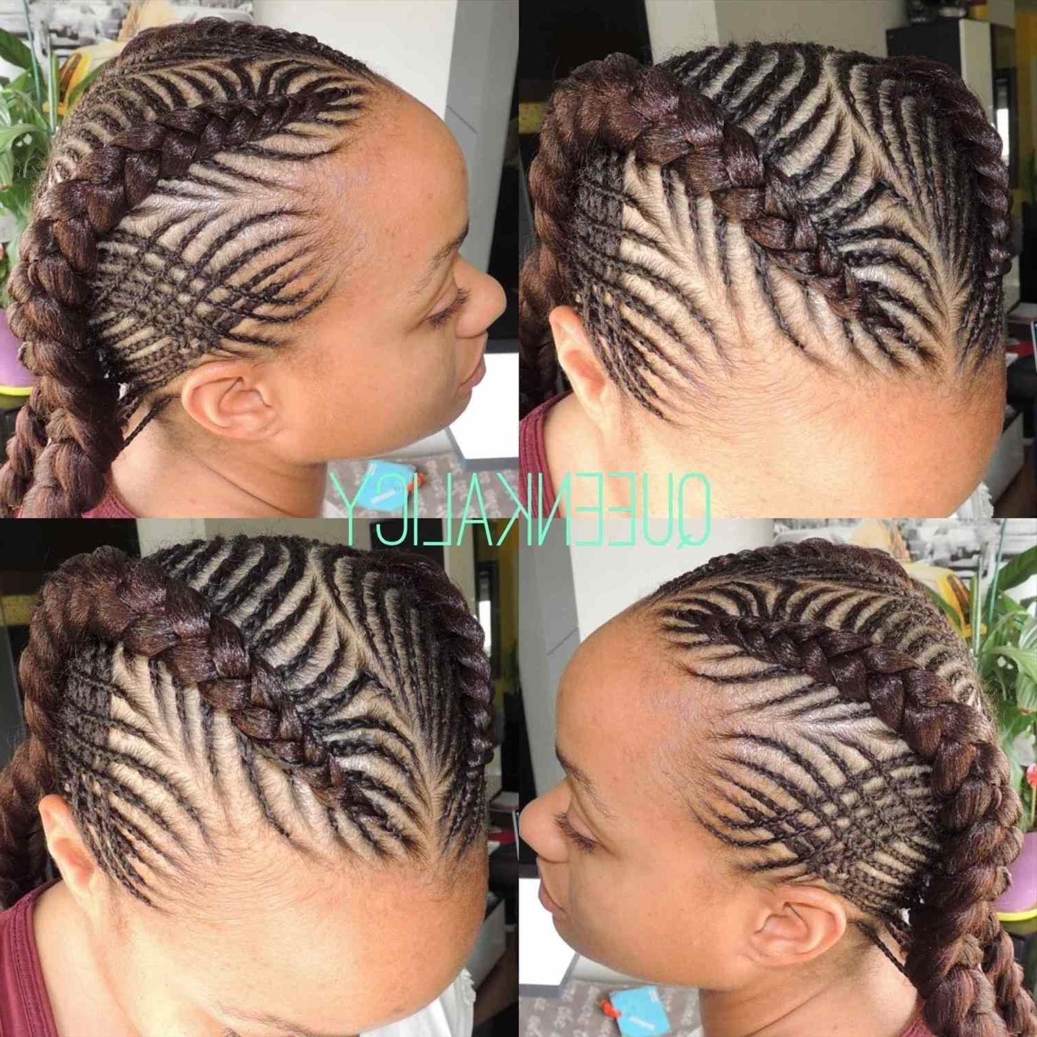 Hair Ideas Styles Within 2018 Braided Hairstyles For White Girl (View 13 of 15)