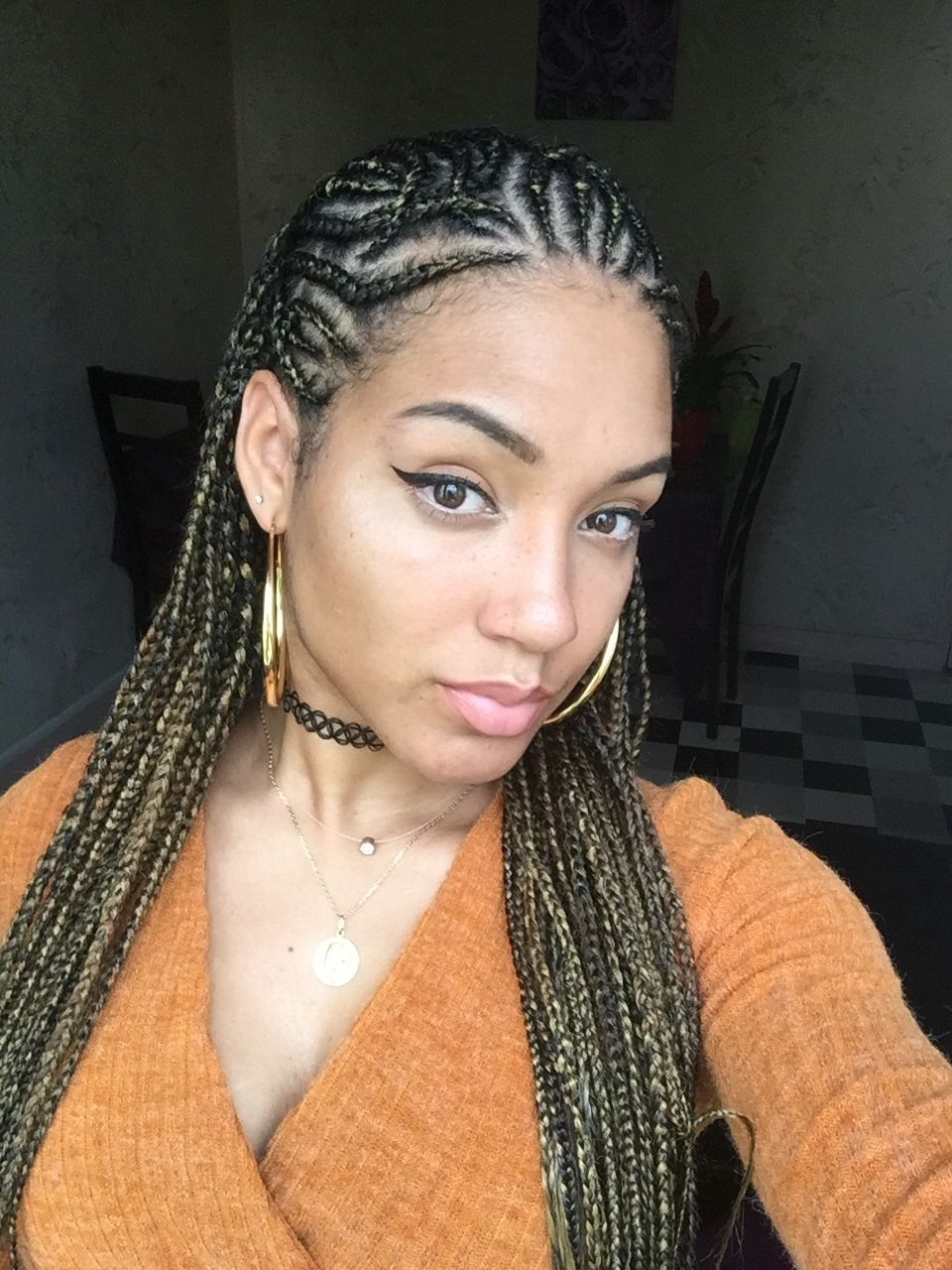 Featured Photo of Alicia Keys Braided Hairstyles