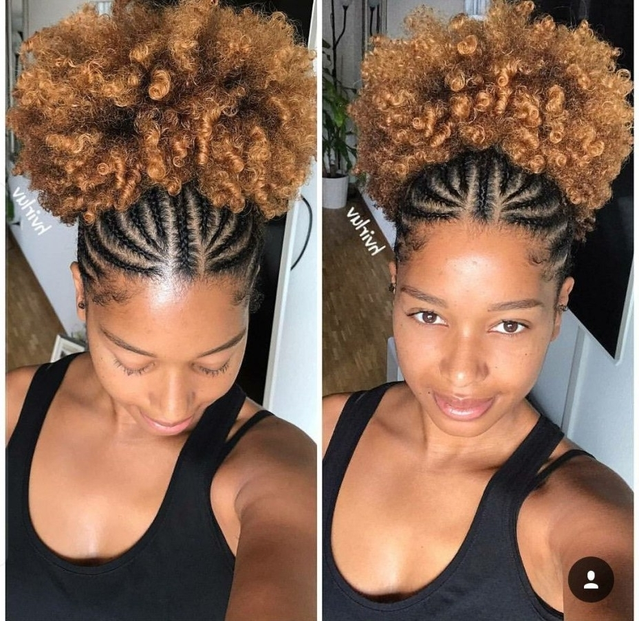Hairstyles And Haircuts For Women And Men Regarding Newest Braided Hairstyles For Curly Hair (View 6 of 15)