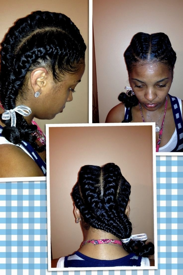 Hairstyles Ideas With Regard To Widely Used Quick Braided Hairstyles For Black Hair (View 9 of 15)