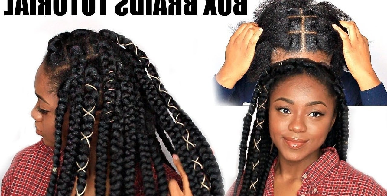 Most Current Braid Hairstyles With Rubber Bands Within Box Braids Using The Rubber Band Method – Afrikan Mbiu (View 9 of 15)