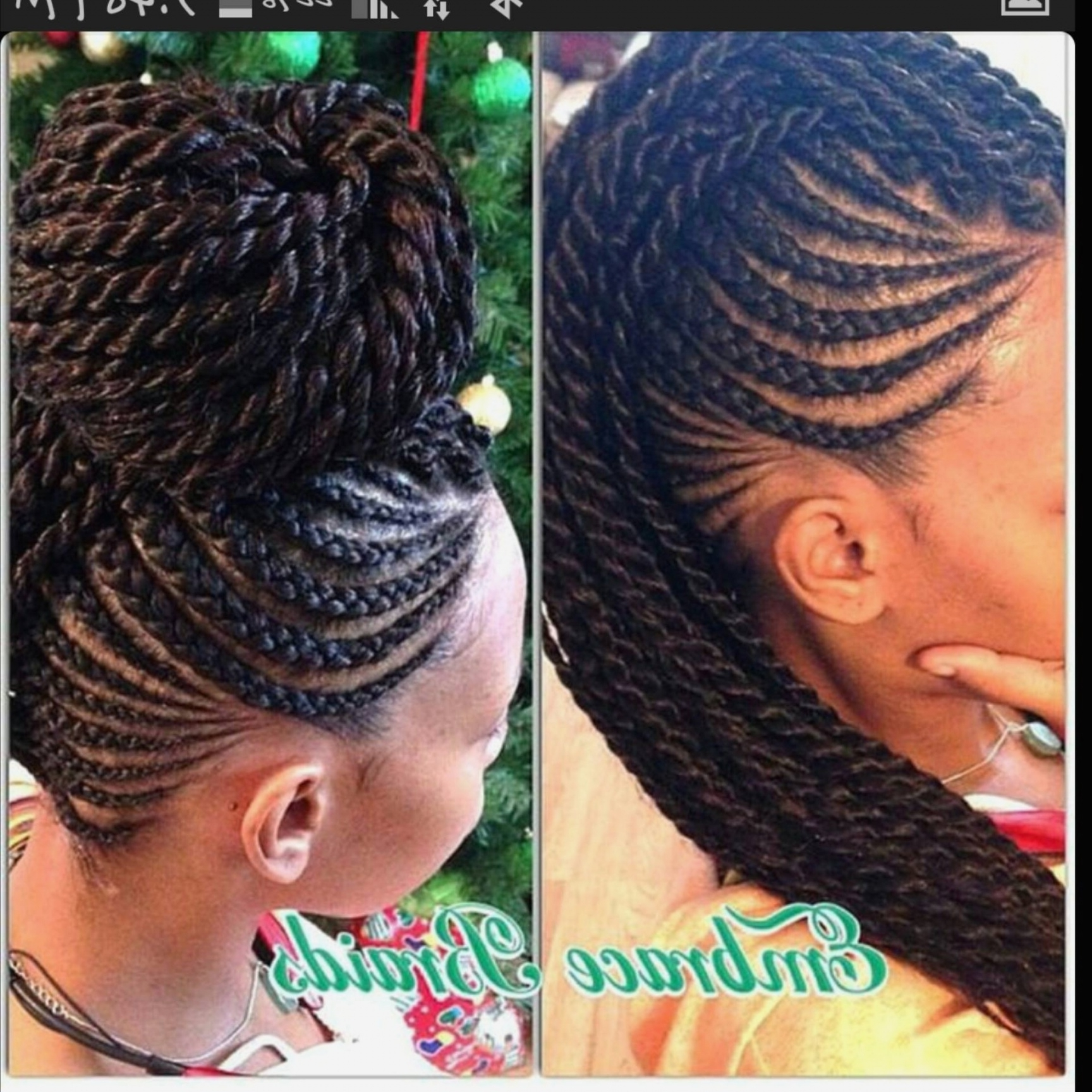 Most Recent Braided Hairstyles In A Mohawk Intended For Braid Hairstyles : New Mohawks With Braids Hairstyles Tutorial With (View 10 of 15)