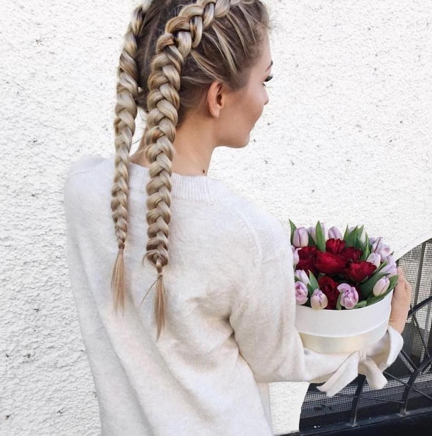 Most Recent Dutch Braid Hairstyles In Braid Hairstyles 2018 Double Dutch Braids Haircut Fashion Frisur (View 14 of 15)