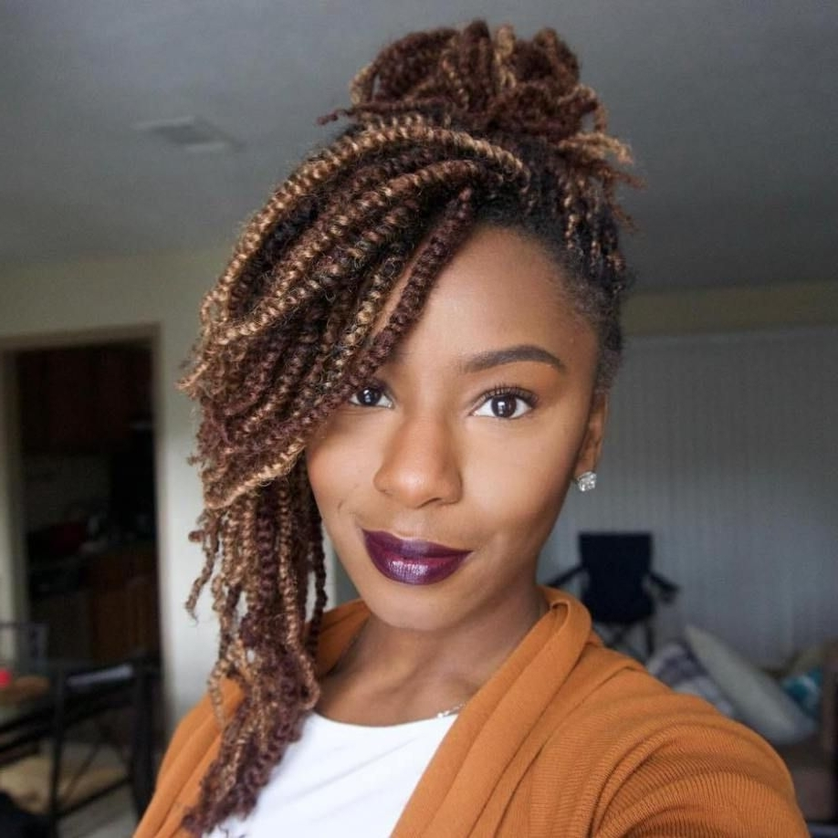 Most Recently Released Braided Hairstyles For Afro Hair For Latesty Hairstyles In Nigeria Twists For Natural Short Hair Cute (View 8 of 15)