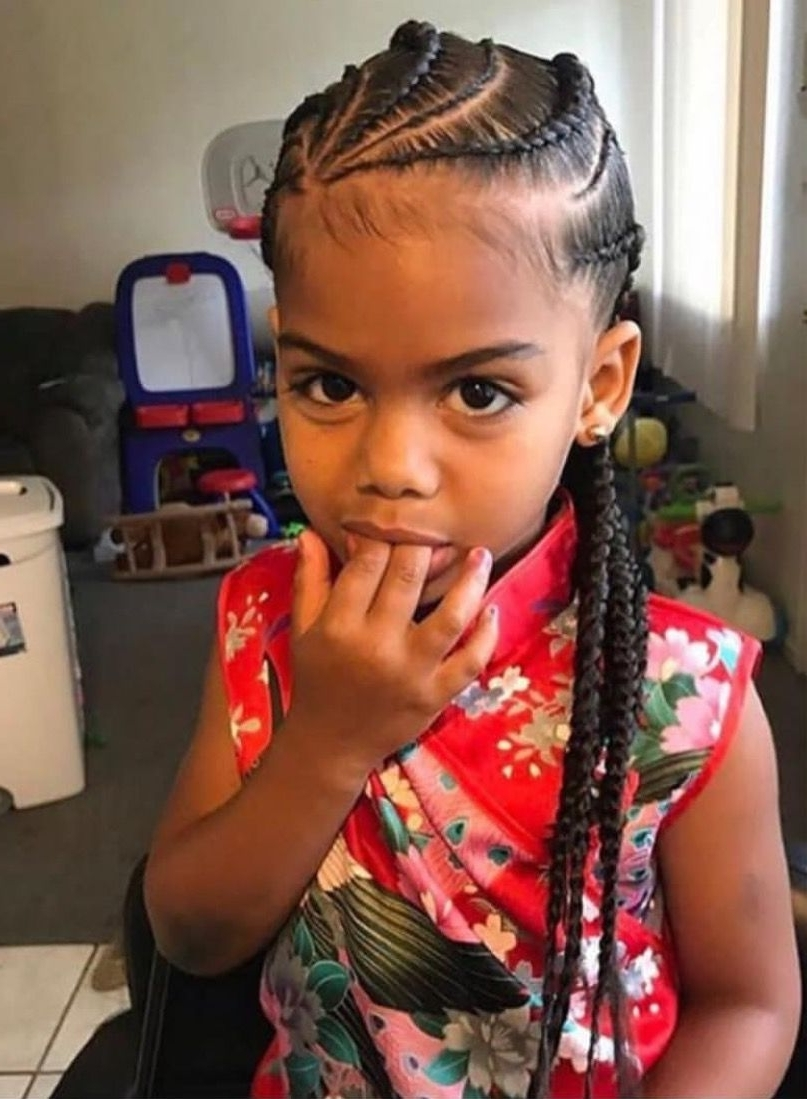 Most Up To Date Braided Hairstyles For Little Black Girl For Pinterest: @danica❤ (View 10 of 15)