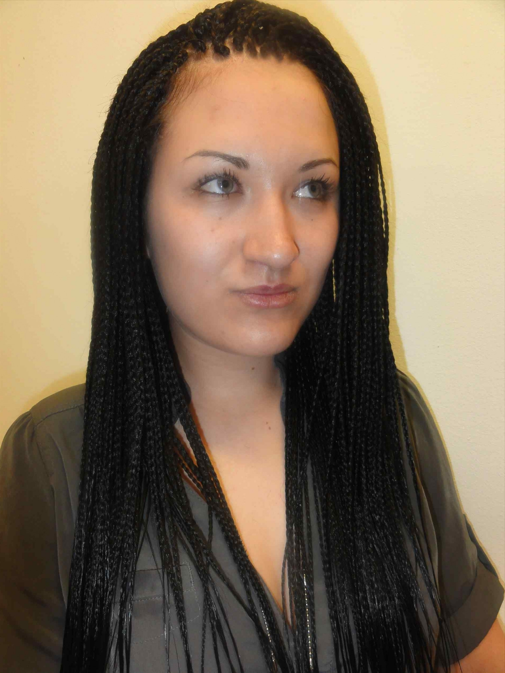 Most Up To Date South Africa Braided Hairstyles Intended For Luxury Beautiful Micro Braid Hairstyles Styles & Ideas (View 5 of 15)