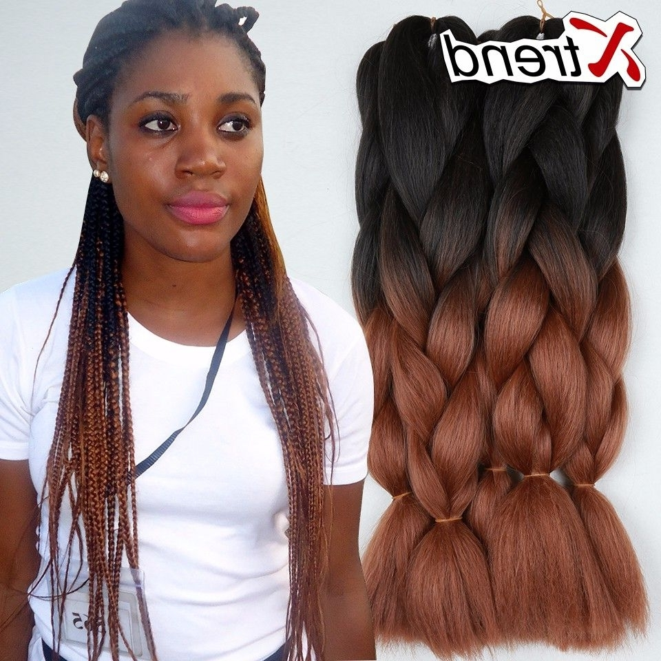 Two Tone Braiding Hair 24 Inch 1b 30 With Regard To Fashionable Braided Hairstyles With Two Braids (View 11 of 15)