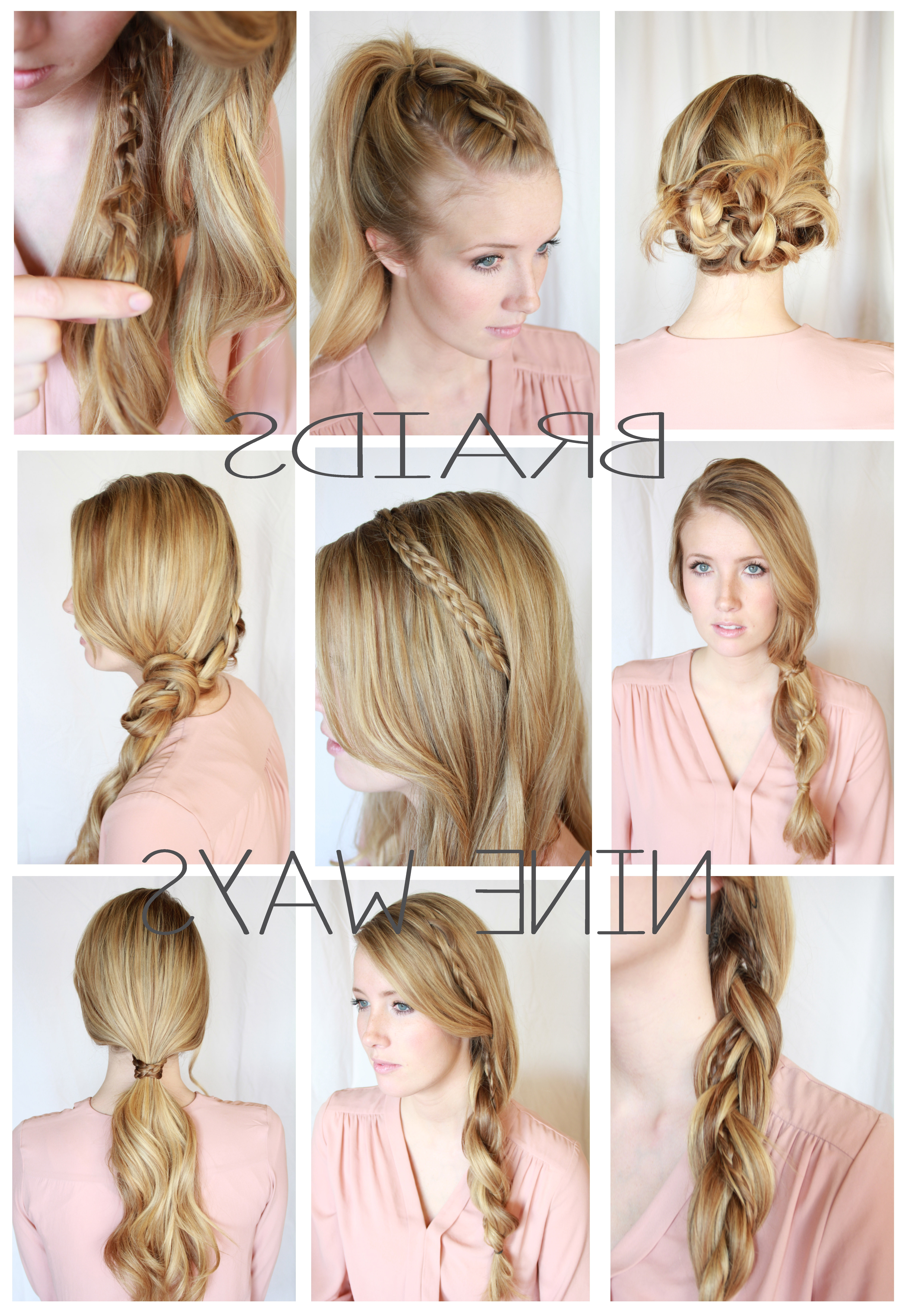 Well Known Braided Everyday Hairstyles Intended For Prepossessing Braid Hairstyles Pinterest With Additional Signature (View 15 of 15)